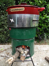 My Wild Stove and I just love it!