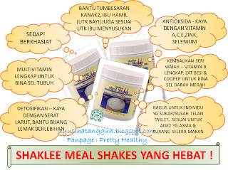 IMEJ SHAKLEE MEALSHAKES