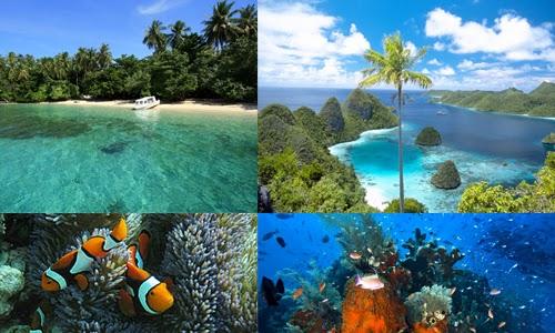 Objek Wisata Papua Taman Nasional Teluk Cendrawasih