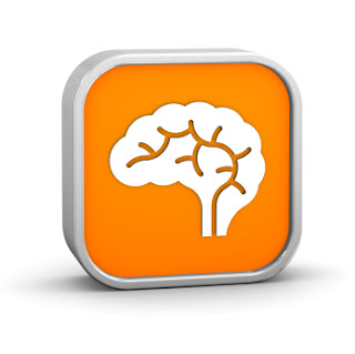 Brain Insights www.braininsightsonline.com