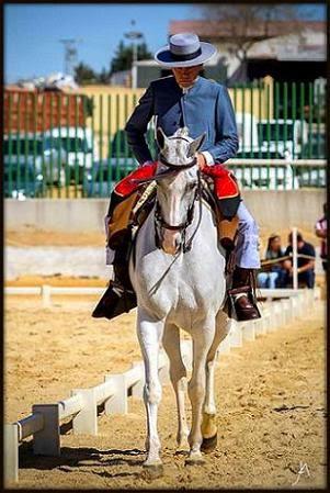 Fotografías del XXXVI Campeonato de Andalucía de Doma Vaquera.