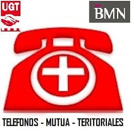 TELEFONOS MUTUA TERRITORIALES