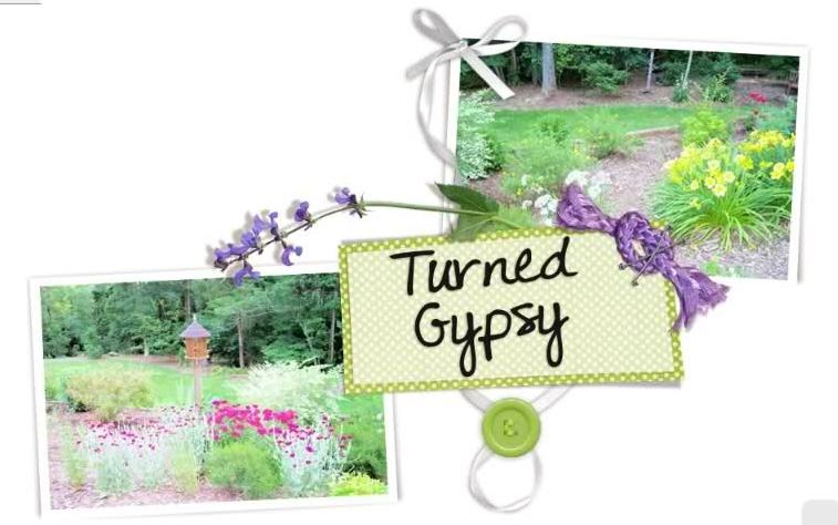 TurnedGypsy
