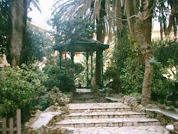 La imagen te transporta a Andalucia,huele a mañanas frescas de escarchas y alientos suaves...