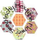 Inchy Hexagon Swap 2011-2014
