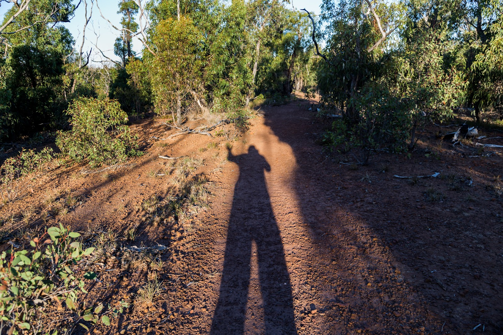 long shadow of person