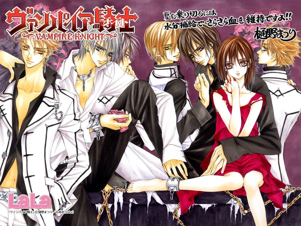 Adaptasi anime yang memiliki lisensi untuk rilis di amerika utara adalah viz media dan dvd nya dirilis pada tanggal 20 juli 2010 ada pula seri light novel