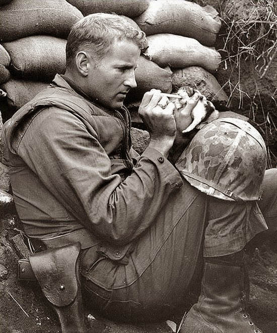 Sergeant Frank Praytor looks after a two-week old kitten during the height of the Korean War. - The 63 Most Powerful Photos Ever Taken That Perfectly Capture The Human Experience