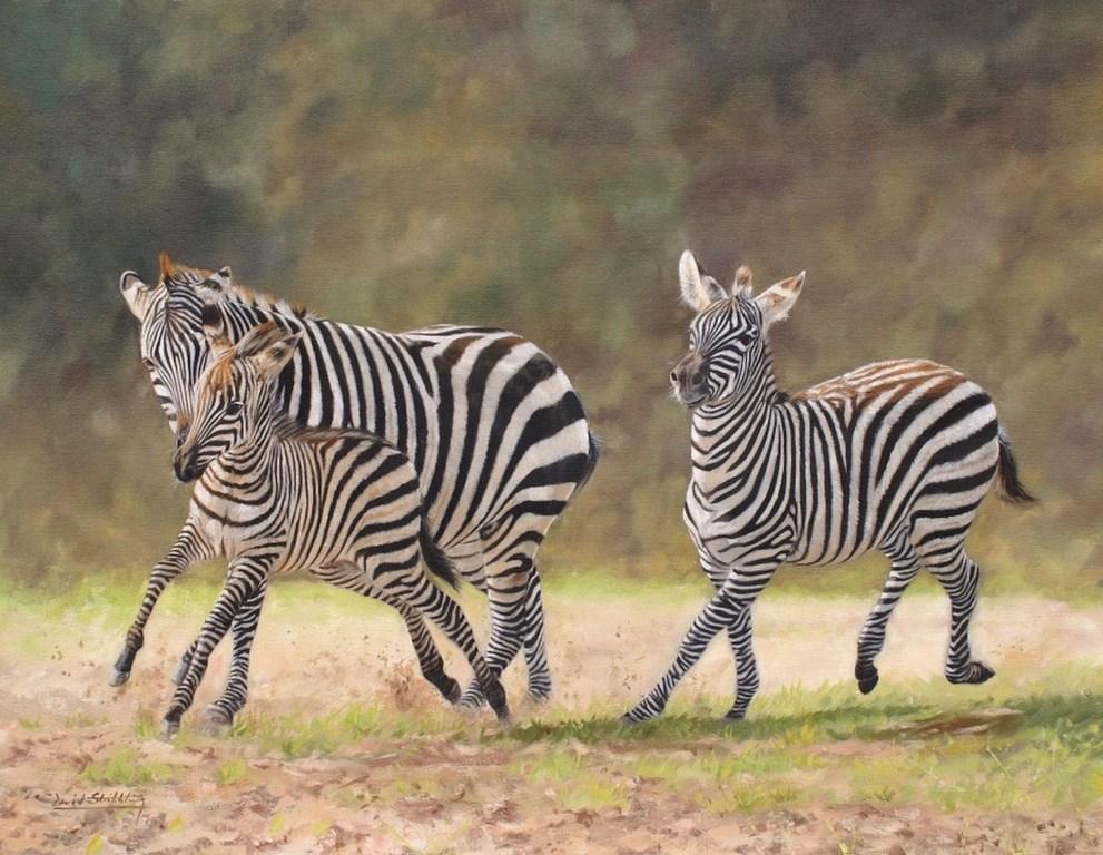 Cuadros pinturas oleos cuadros bonitos con animales cebras - Cuadros de cebras ...