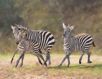 animales-cebras-oleo