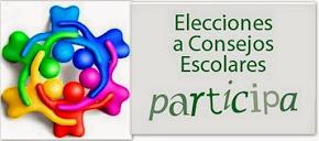 ELECCIONES A C.E.