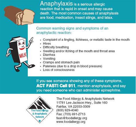 food allergies essay