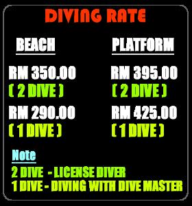 DIVING RATE