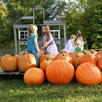 New England Fall Events_Pumpkin Patch Kids