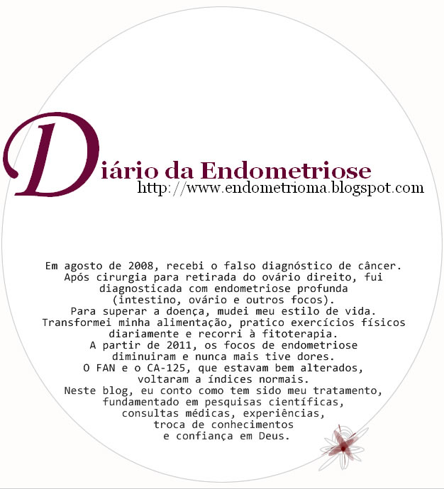 Endometriose Blog