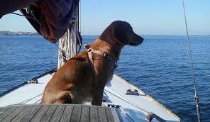 Travesías náuticas