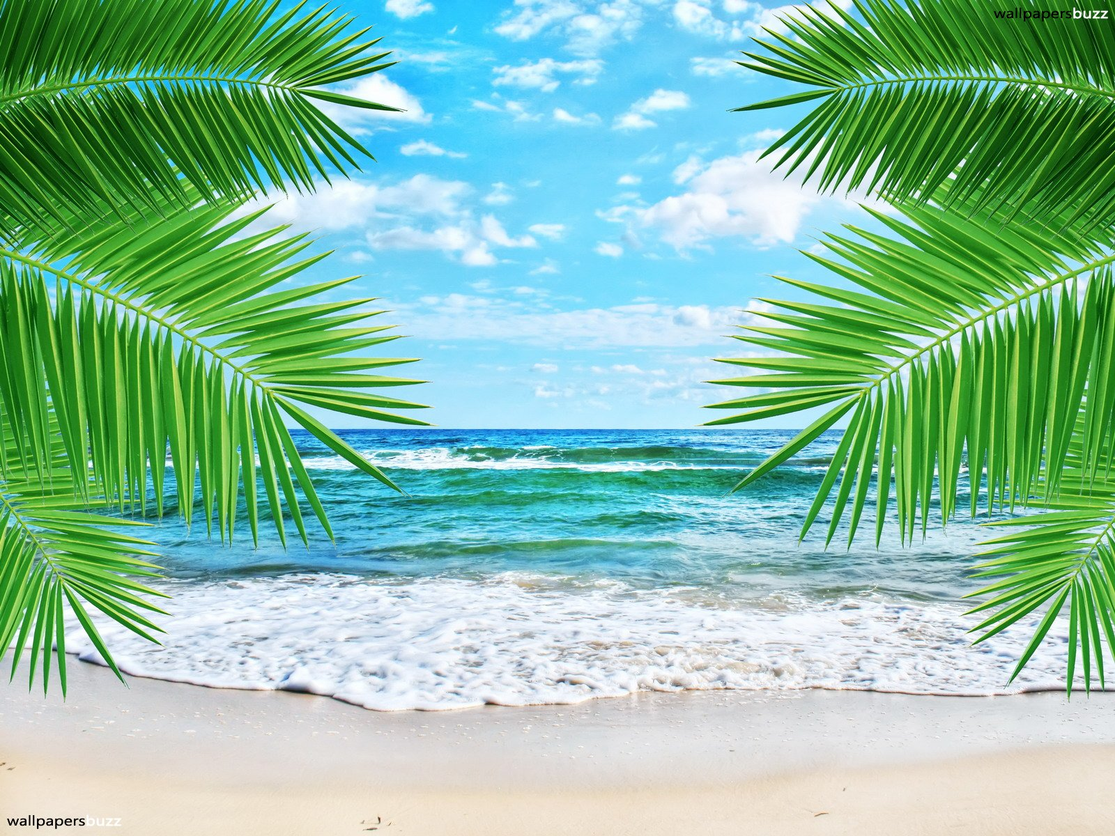 Wallpaper murals tropical beach just for sharing for Beach mural wallpaper