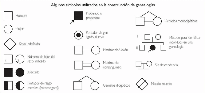 Analisis de Genealogias