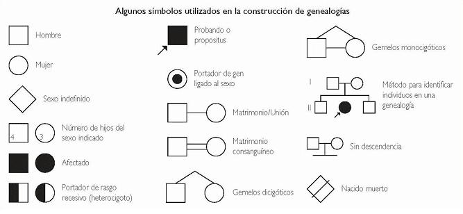 Analisis de Genealogias