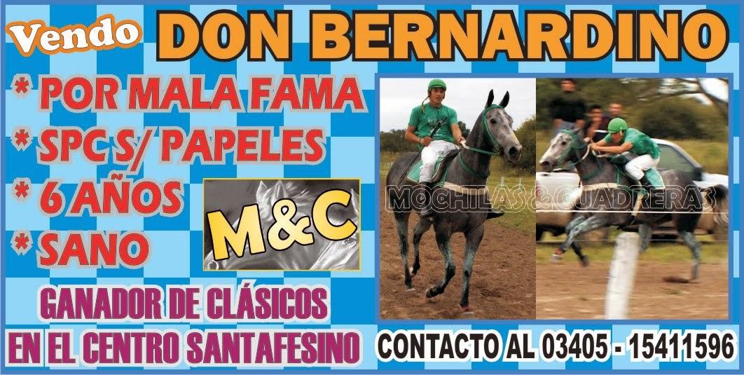 BERNARDINO - 17/07/14