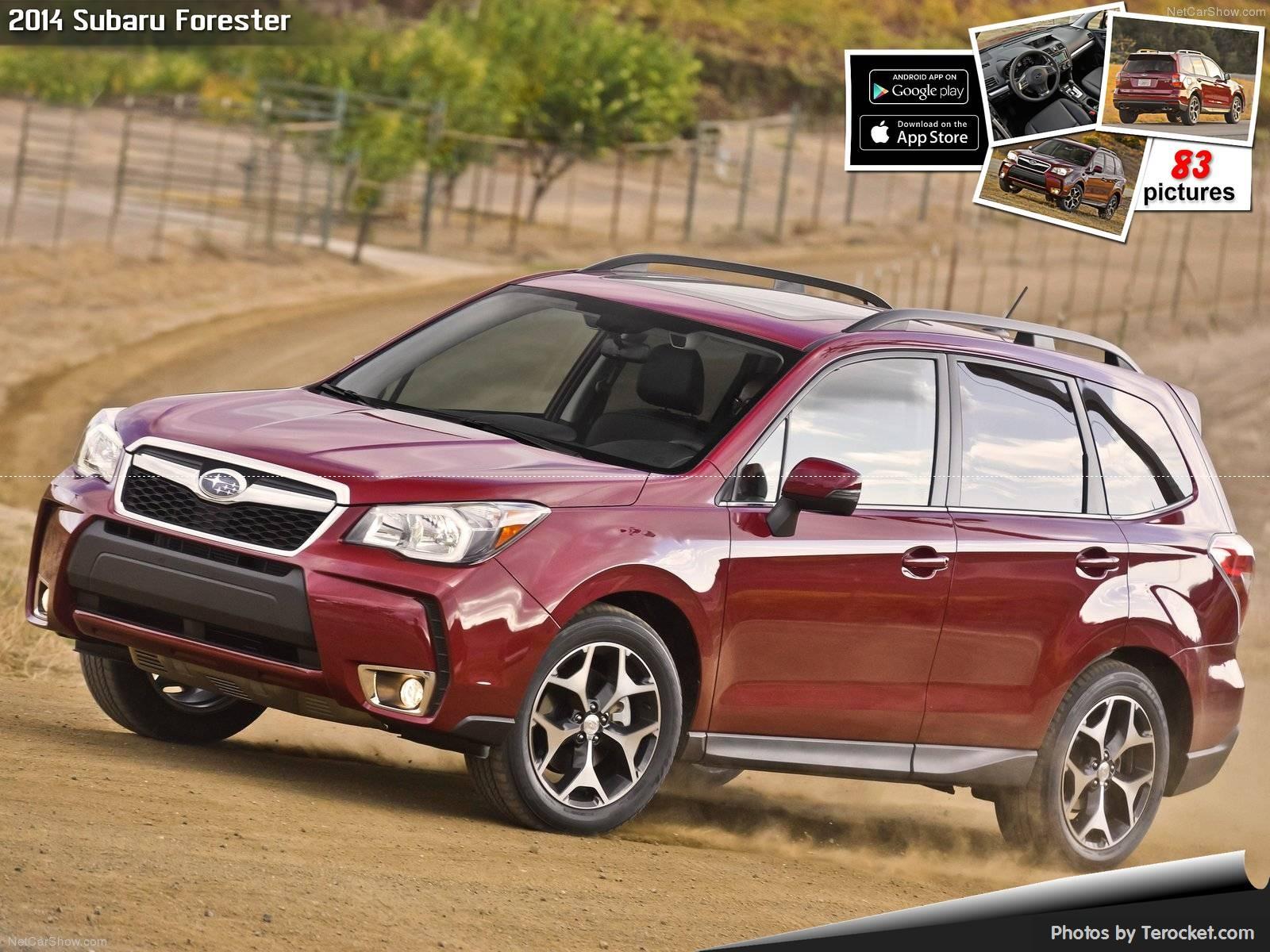 Hình ảnh xe ô tô Subaru Forester US-Version 2014 & nội ngoại thất