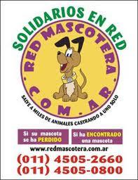 RED MASCOTERA