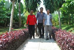 Jalan di Kebun