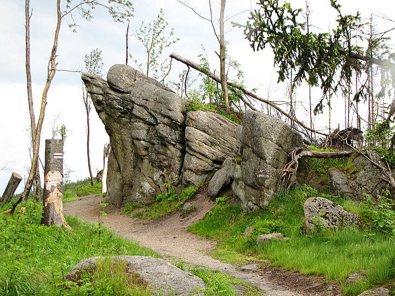 Wychodnia skalna przy szlaku między Magurką Wiślańską i Magurką Radziechowską.