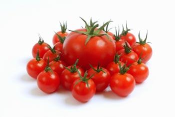 Trị mụn cám ở mũi bằng cà chua