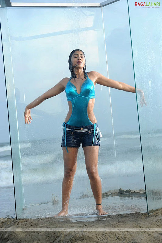 SHRIYA SARAN Hot Pose With Her Lovely Looks Photoshoot images