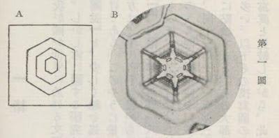 『雪華図説』の研究 模写図と顕微鏡写真と比較 第一図
