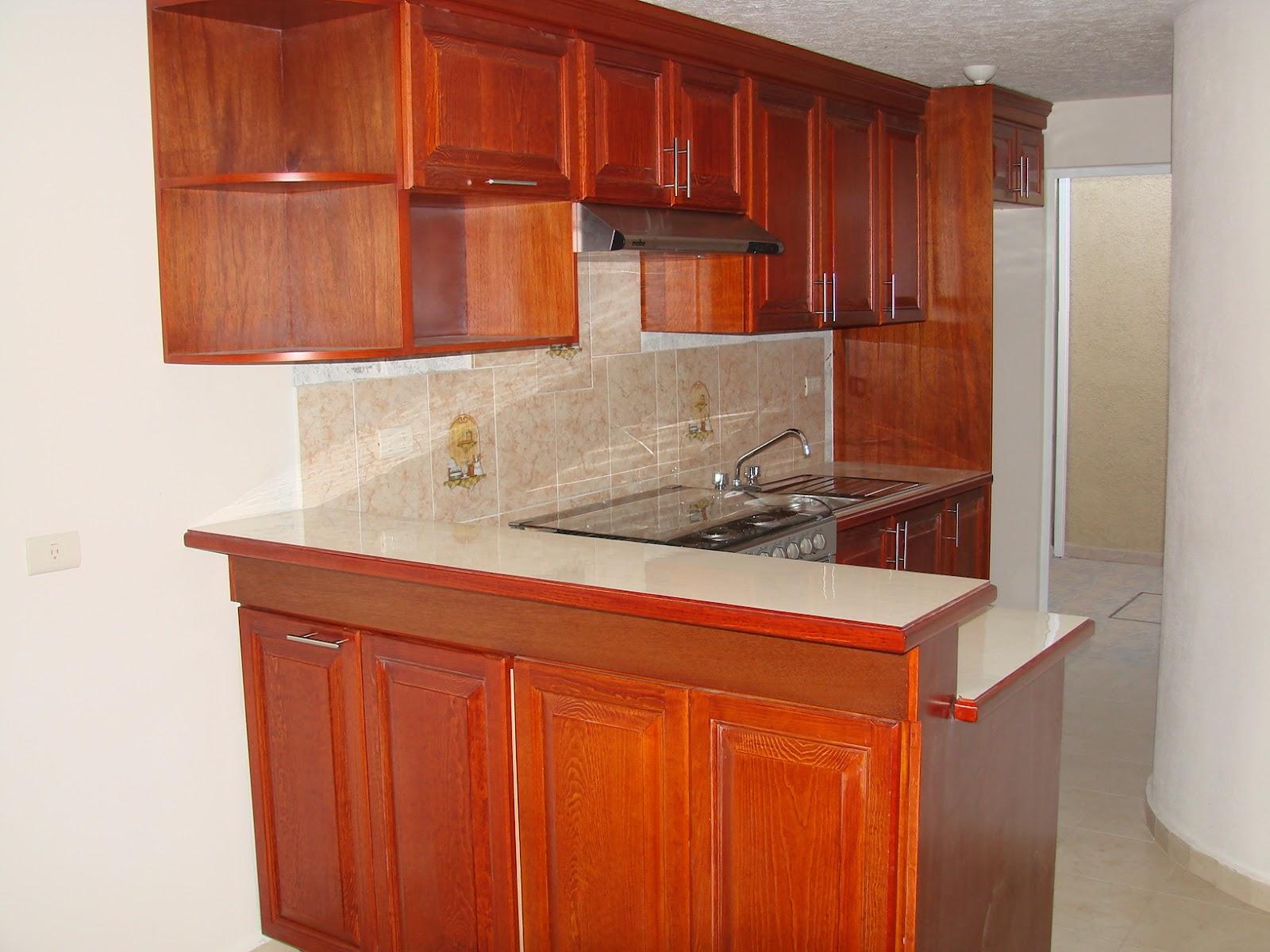 Cocinas integrales vestidores closets etc cocinas varias for Cocinas integrales de madera