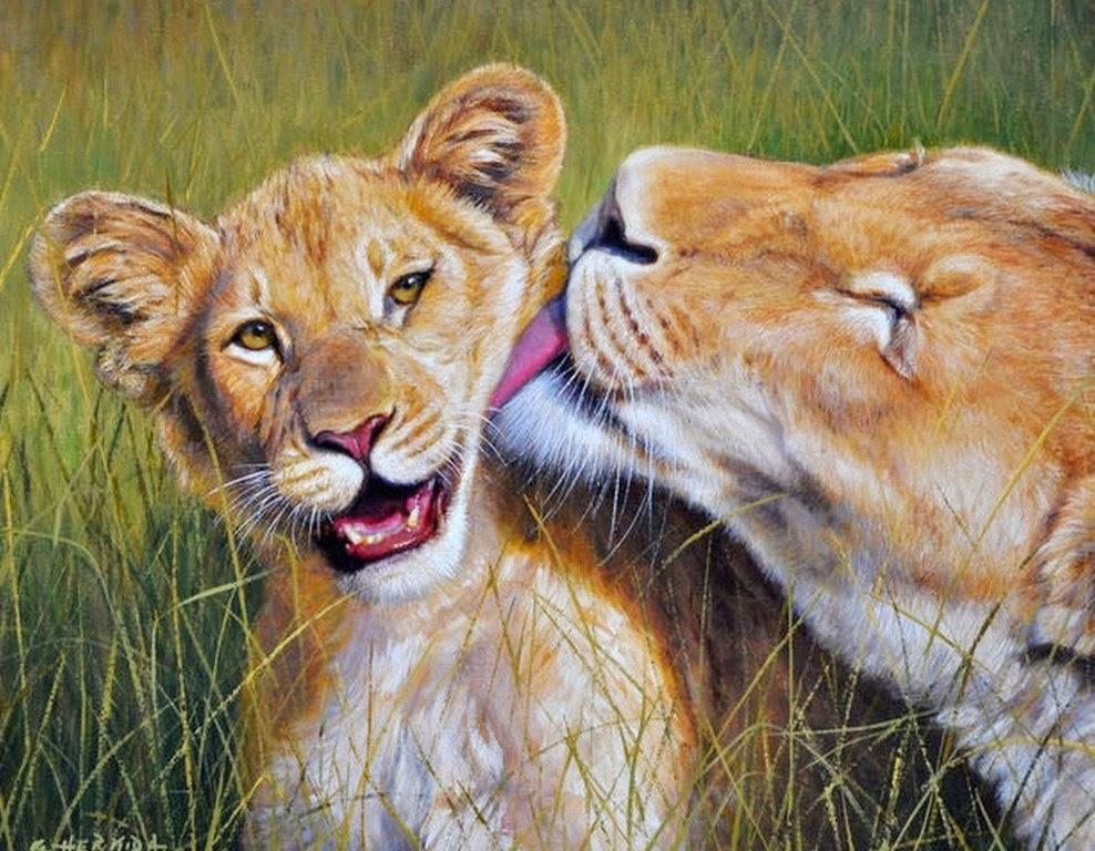 animales-leones-cuadros