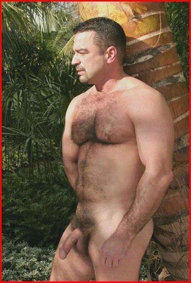 hairy bears image