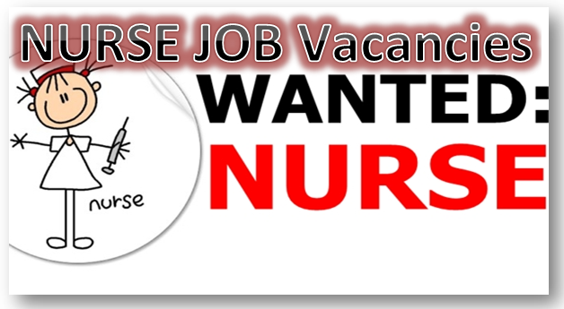 Customer Service Officer Job Vacancies for Nursing Graduates