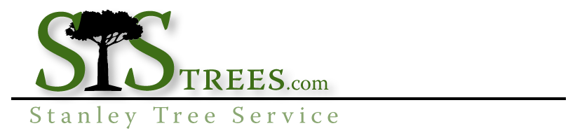 Stanley Tree Service