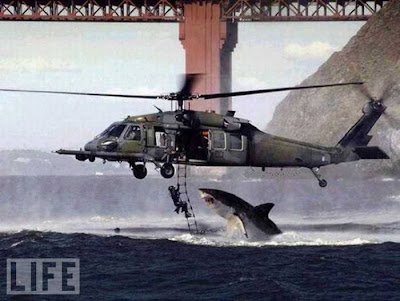 Most Famous Fake Photos Seen On www.coolpicturegallery.us