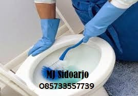 Sedot WC Semambung Gedangan