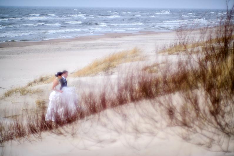 vestuvių nuotraukos tarp kopų