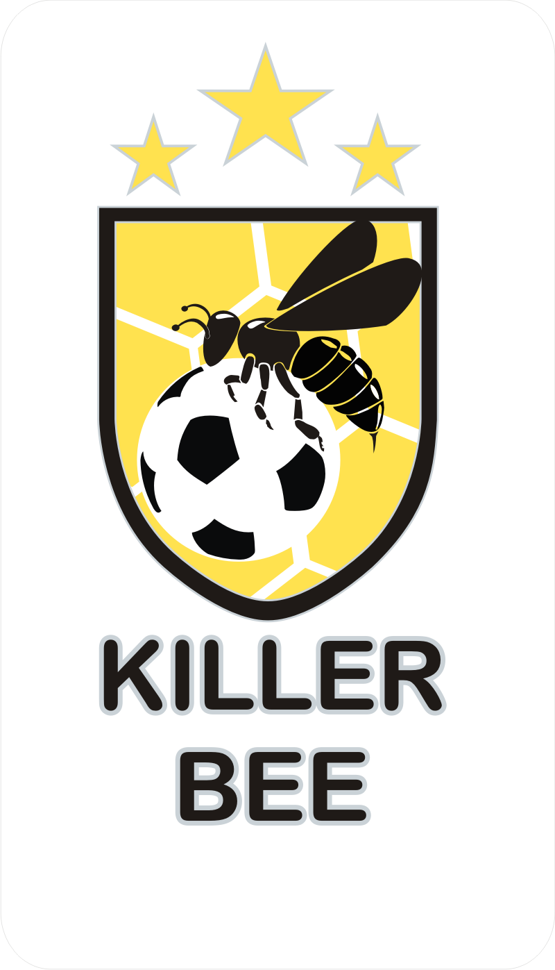 erwins design portfolio killer bee the futsal team from