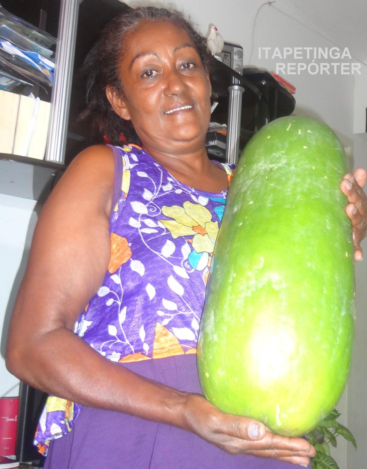 Só em Ilhéus: Itapetinga: Dona Vera e o pepino gigante