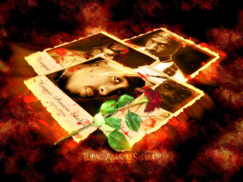 http://3.bp.blogspot.com/-LNue3zRIG8U/Ttxm0-1h7lI/AAAAAAAABQU/mUmd1PKGRTk/s1600/2pac-wallpaper-hd-9-790888.jpg