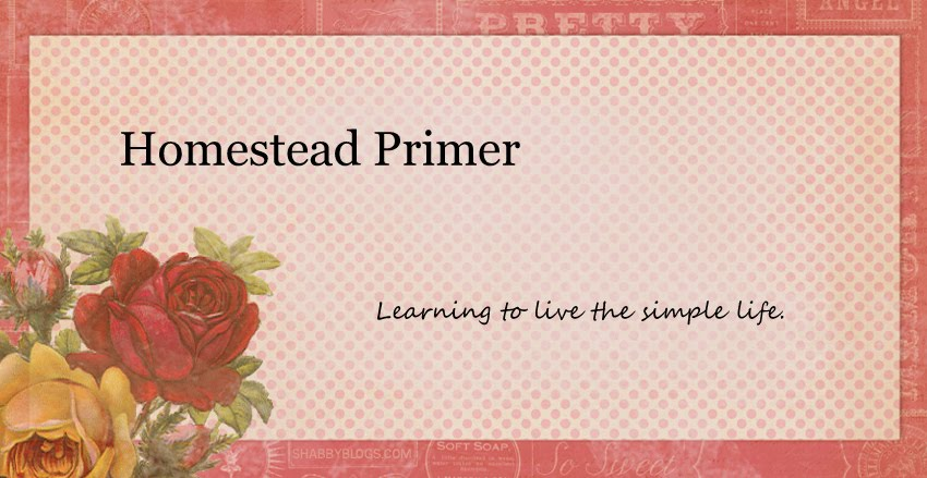 Homestead Primer
