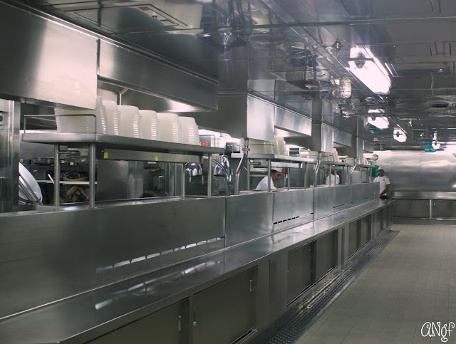 Immaculate galley kitchen on board the Princess Cruises Royal Princess ship | Anyonita-nibbles.co.uk