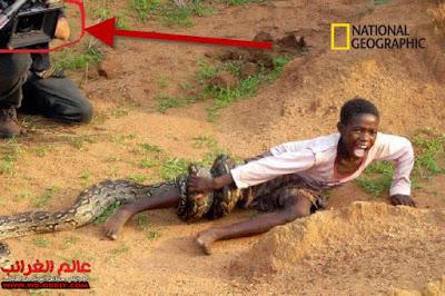 ضحية الثعبان، ناشيونال جيوغرافيك، العجائب