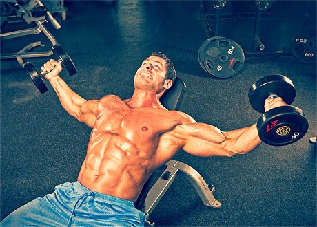 تمرين التفتيح - تضخيم عضلة الصدر - اسرار كمال الاجسام