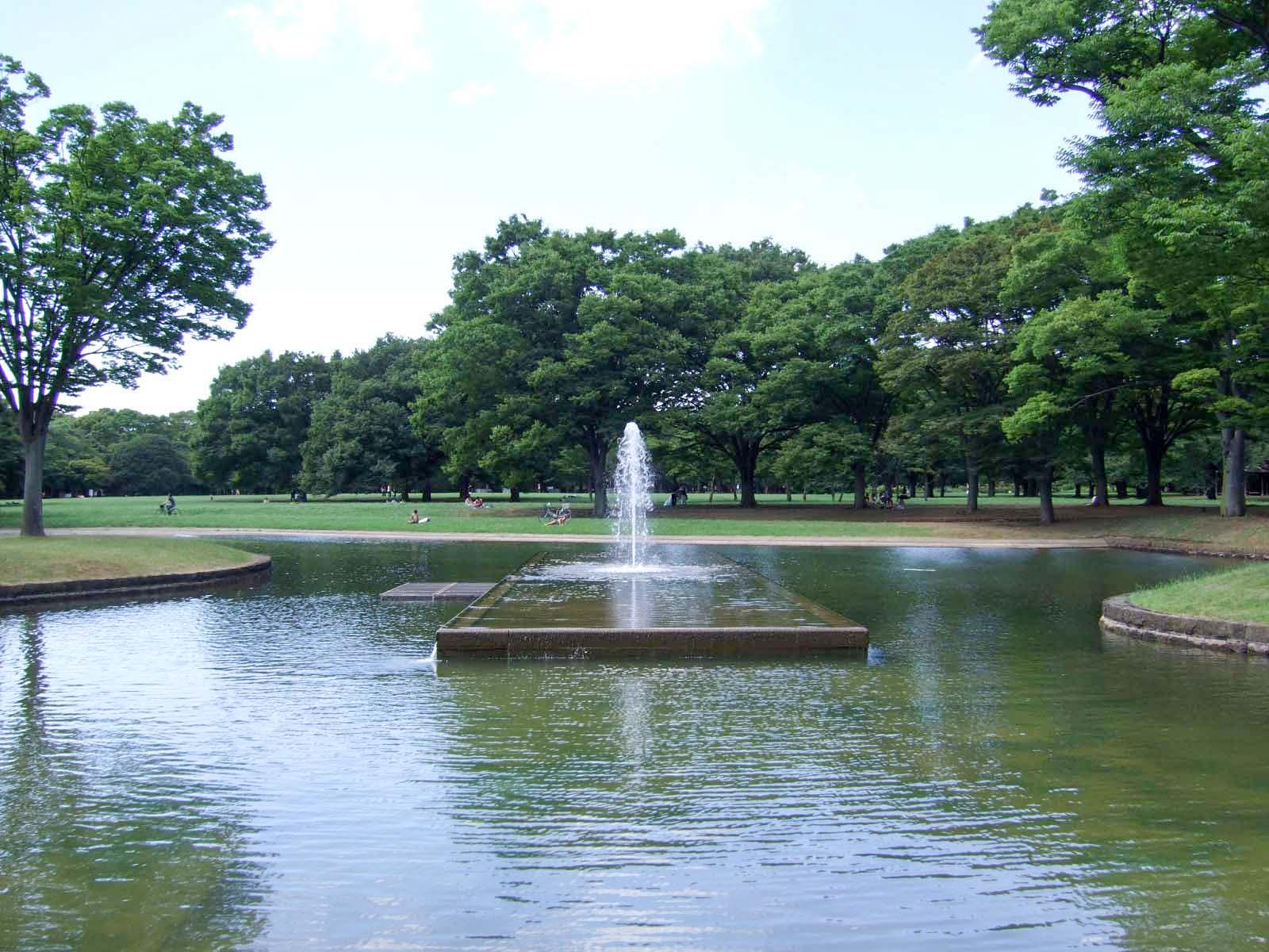 *噴水,森林,代々木公園,盛夏,真夏〈著作権フリー無料画像〉Free Stock Photos