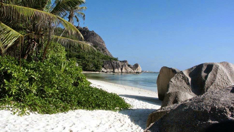 beach-tropical-backgrounds-wallpaper
