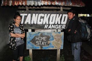Penginapan di tangkoko