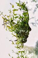 Rostro vegetal